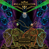 Mastodon - Divinations (Cover)