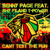Benny Page feat. Shy Fx & T-Power - Cant Test The Run (TheRipper Mashup)