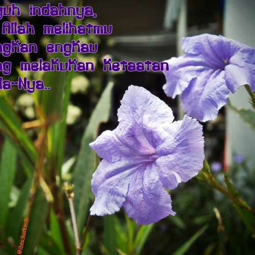 10 Hari Terakhir Ramadhan