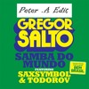 Gregor Salto - Samba Do Mundo (Laid Back Luke Remix - Peter .A Edit)