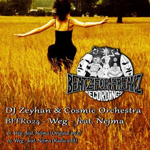 DJ Zeyhan & Cosmic Orchestra - Weg - feat. Nejma (Original mix)