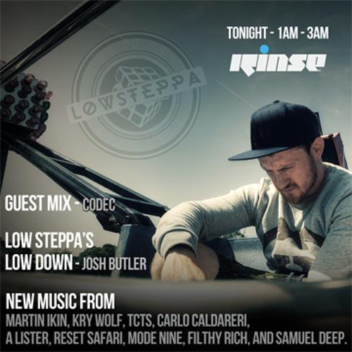Low Steppa on Rinse FM Guest Mix Codec 18th July 2014