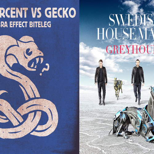 100 Percent Vs Gecko & Greyhound Swedish House Mafia (Yoann Rense Bootleg) ***FREE DOWNLOAD***