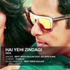Hai Yehi Zindagi - KICK- (Meet Bros Anjjan ft Salman Khan)