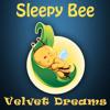 07. Velvet Dreams