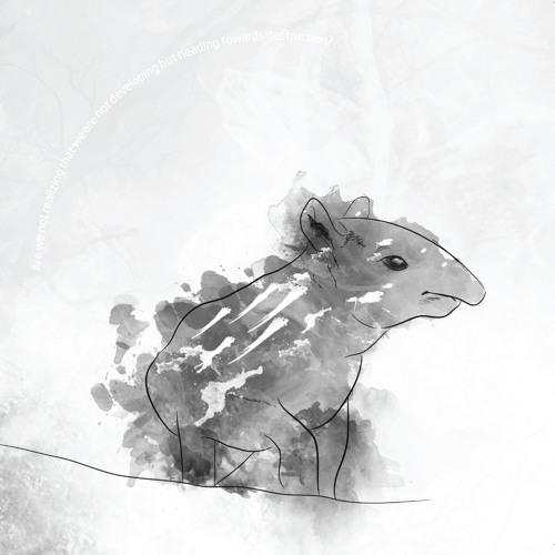 Tapirus - I Really Wonder When We'll Meet Again