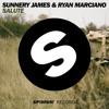Diamond Pistols vs. Sunnery James & Ryan Marciano - Bugatti Salute (MELODIN EDIT)