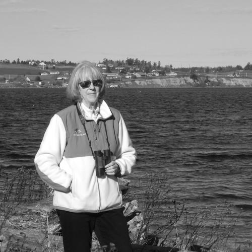 "Listen: Sandra Pollard talks about ""Puget Sound Whales For Sale"""