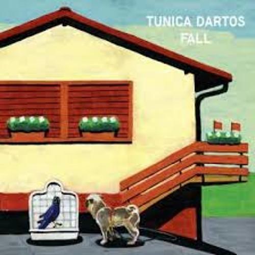 Tunica dartos - porch
