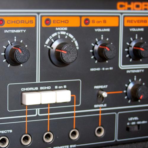 NSL006 Chorus Echo 501 - Pitch, Time & Reverse