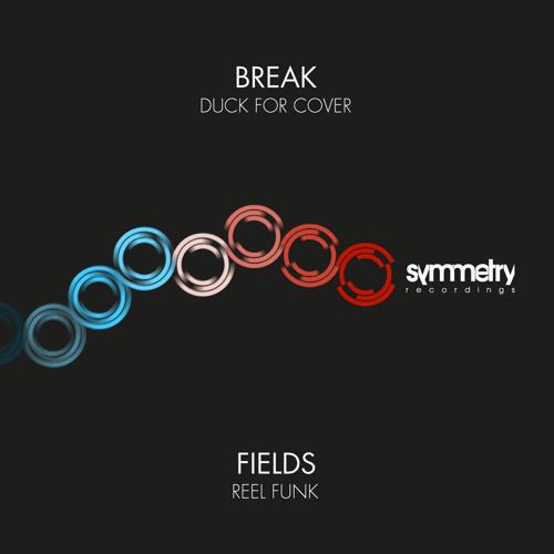 AA - Fields - Reel Funk (SYMM017)