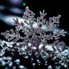 Snowman (Frozen Remix)