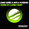 OWNER OF A LONELY HEART - DARIO NUNEZ&BOTZ&FLYDRUMS