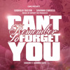 Shakira ft. Rihanna - Can't Remember To Forget You COVER