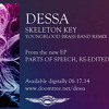 Dessa - Skeleton Key (Youngblood Brass Band remix) INSTRUMENTAL / NO VOCALS