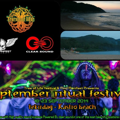 "Ambient Mann -  ""Summer Solstice ""Promo set-Tree of Life Festival!"