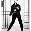 Elvis Presley Jailhouse Rock House Remix
