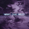 What You Need (Prod. RELTA)