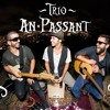 Trio An Passant - Little Lion Man ao vivo (Mumford and sons cover)