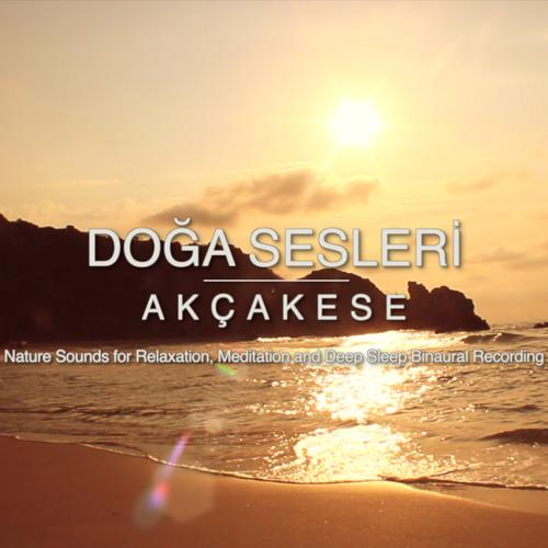 Akcake Siesta Waves