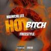 Hot Bitch MawChiLee mix