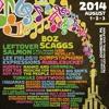 WDVE Interview for Flood City Music Festival 2014