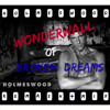 Oasis - Green Day - Wonderwall of Broken Dreams - 2014 Holmeswood Re-Mash Mix