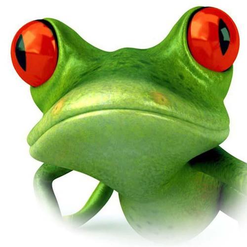 Mahaon - Cyberfrog
