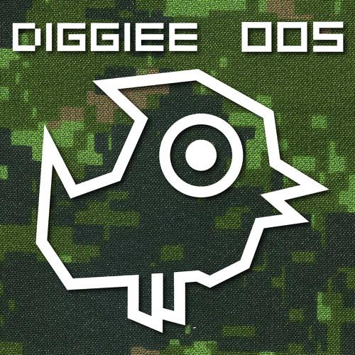 Coskun Akmeric - Yes Sir (TEASER) DIGGIEE 005