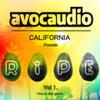 Roommate - Island Riddim (Dirtys Head Nod Remix) Avocaudio 030 by dirty d / dirty spex