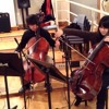 Richard Sanderson - Reality [la Boum soundtrack] cover by Diversion Cello Ensemble