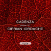 Cadenza Podcast | 127 - Ciprian Iordache (Cycle)