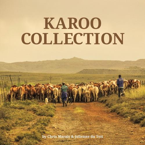 702 Talk Radio Karoo Space Interview