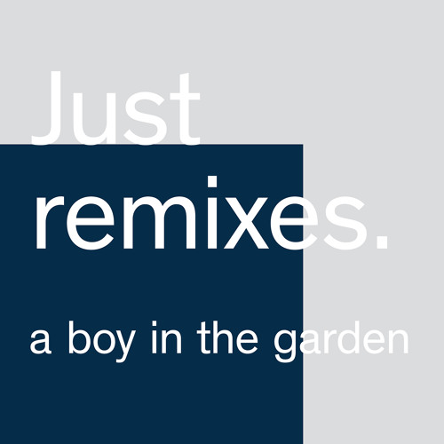What In The World (A Boy In The Garden Remix)