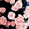Download Çiçekli şiirler yazmak istiyorum bayım!