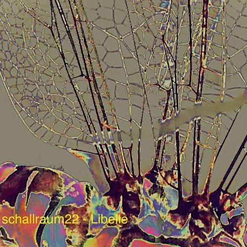 schallraum22 - Libelle