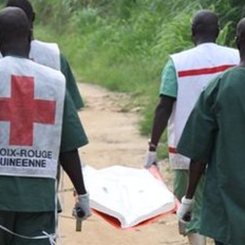 Newshour: could Ebola be a global epidemic?