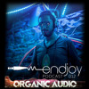 Organic Audio 2014 [live set]
