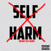 DNSH (Do Not Self Harm) - PlatniumStyles