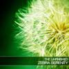 Zebra Serenity - 128 Sounds for U-he Zebra