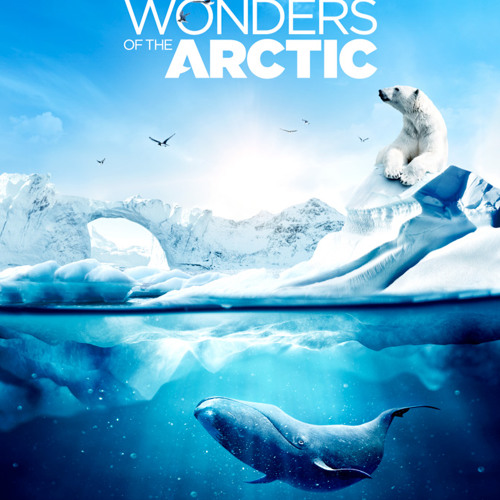 WONDERS OF THE ARCTIC: Tagging the Whales (Jean-Paul De Roover, Inuit Vocals)