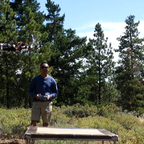 How Drones Could Make Forest Restoration Easier