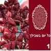 11.Eshet Chayil - HaMalah HaGoel Oti