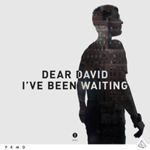 I've Been Waiting by Dear David