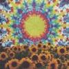 Download Acid Rap Mash-Up (Cover) Mp3