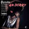 BARNABA FT LAMAR AM SORRY THE REFIX MST