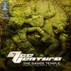 ACE VENTURA - THE DANCE TEMPLE MIX - special pre Boom 2014 set mp3