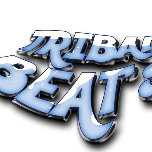 No Beef - Steve Aoki (Tribal 2014 - Tribal Beats )