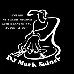 Live at The Tunnel Reunion @ Club Sankeys NYC by Mark Salner