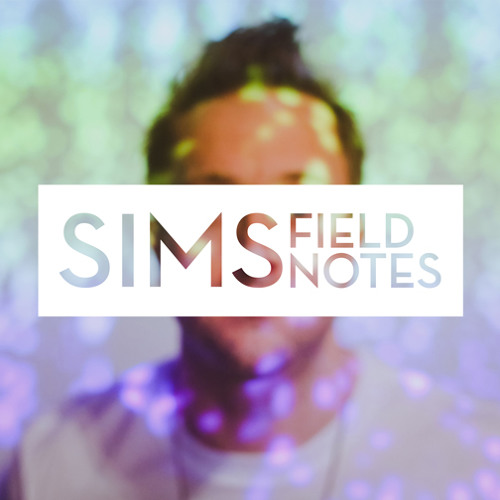 "Sims ""This Is The Place"" (feat Astronautalis)"